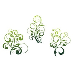 Floral elements and motifs vector