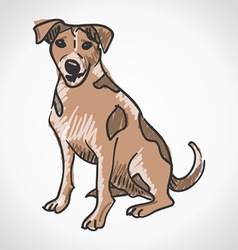 Jack Russell Terrier vector image vector image