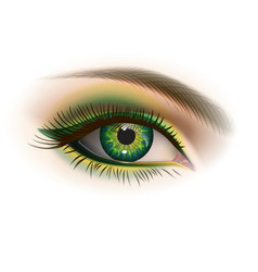 Female green eye vector