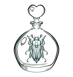 Hand drawn engraving sketch of may bug beetle in vector