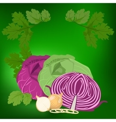 Cabbage and onions vector
