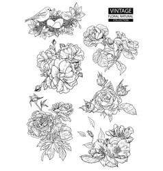 Floral outline coloring vintage collections vector