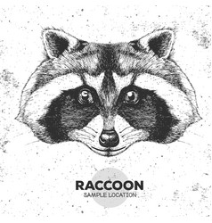 hipster animal raccoon hand drawing muzzle of vector image vector image