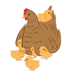Hen with chickens vector