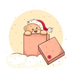 Teddy bear in box vector