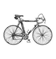 racing bicycle vector image vector image