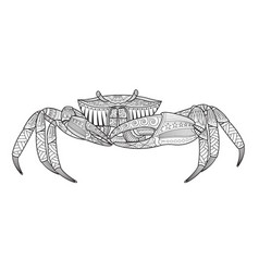 Crab hand drawn sea animal vector