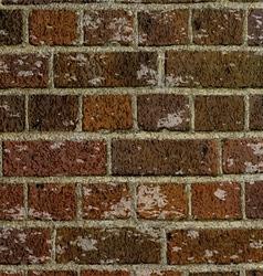 grunge brick wall texture 2505 vector image