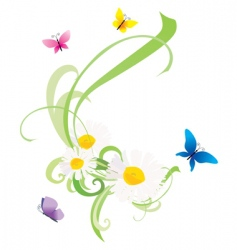 vector daisy flowers and butterflies vector image