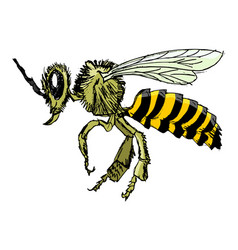 Sketch of bee vector