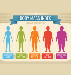 woman body mass index medical infographic vector image
