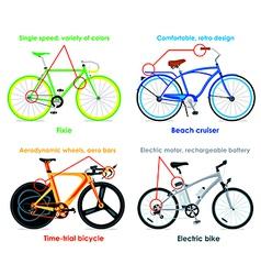 Bicycle types set II vector image