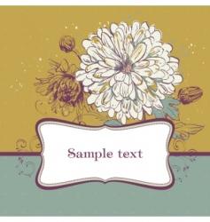 blooming chrysanthemums vector image