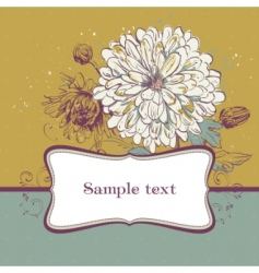blooming chrysanthemums vector image