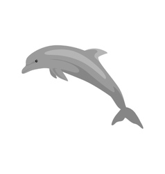Monochrome dolphin isolated on white background vector