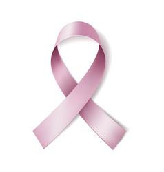 realistic pink ribbon vector image