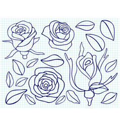 Ballpoint pen drawing roses and leaves vector