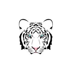 a white tiger head vector image