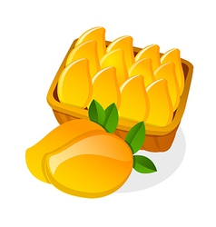 Icon mango vector