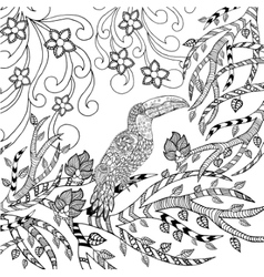 Toucan coloring page vector