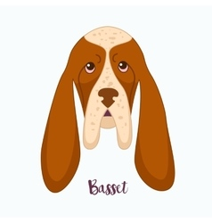 Dog basset vector