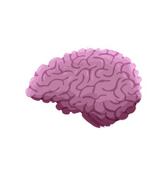 Hand drawn cartoon brain isolated on white vector