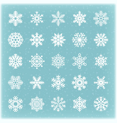 beautiful winter snowflakes for xmas card vector image vector image