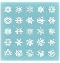 beautiful winter snowflakes for xmas card vector image