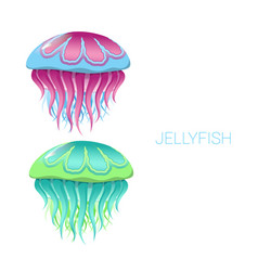 fantastic jellyfish vector image