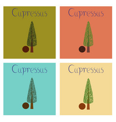 Assembly flat nature plant cupressus vector