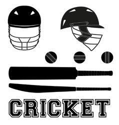 Cricket symbols Flat style vector image