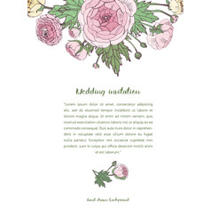 Background with pink ranunculus flowers vector