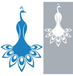 Peacock vector image vector image
