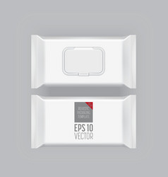 Blank packaging template mockup isolated on grey vector image vector image