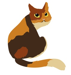 Calico cat vector image vector image