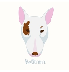 dog Bullterrier vector image vector image