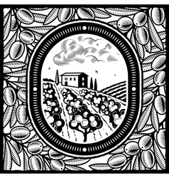 Olive grove black and white vector image vector image