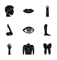 Body icons set simple style vector