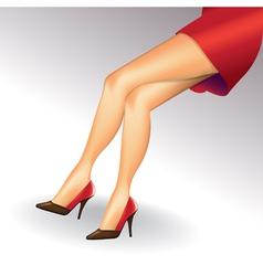 Sexy legs vector image vector image