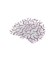 Hand drawn brain isolated on white background vector