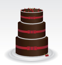 Chocolate cake vector