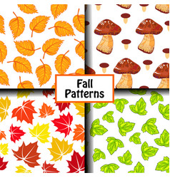 colored fall pattern vector image vector image
