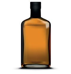 Dark bottle vector