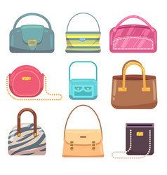 ladies leather hand bags set vector image vector image