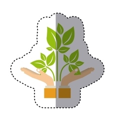 colorful sticker of hands holding a branch with vector image