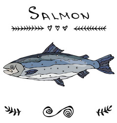 salmon fish for fishing club or seafood sushi menu vector image