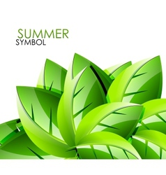 Summer leaves concept background vector image vector image
