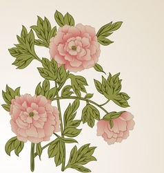 Background with peonies vector image