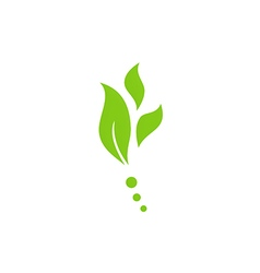 leaf nature herb green logo vector image vector image