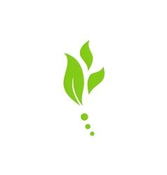 Leaf nature herb green logo vector